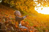 Warm Moments Of Autumn. Toddler Boy Blue Eyes Enjoy Autumn. Small Baby Toddler On Sunny Autumn Day.  poster