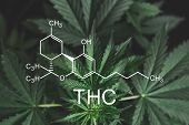 Thc Formula, Tetrahydrocannabinol . Medical Marijuana, Cannabinoids And Health, Hemp Industry, Cbd A poster
