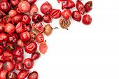 Lot Of Whole Peruvian Pink Pepper Copyspace Flatlay Isolated On White Background poster