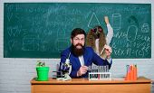 Explaining Biology To Children. Man Bearded Teacher Work With Microscope And Test Tubes In Biology C poster
