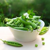 stock photo of pea  - fresh peas in a white bowl on the table - JPG