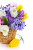 stock photo of beautiful flower  - Bouquet of spring flowers in basket isolated on white background - JPG