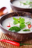 picture of gai  - Thai chicken and coconut milk soup - JPG