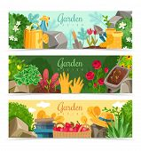 Garden Plants Horizontal Banners. Set Of Three Horizontal Banners On The Theme Of Gardening And Gard poster