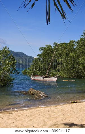 Madagascar Nosy Be Rock Stone Branch Boat Palm Lagoon