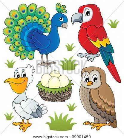 Various birds theme set 2 - vector illustration.