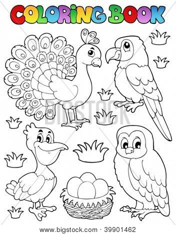 Coloring book bird image 4 - vector illustration.