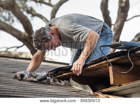 Man Repairing Rotten Leaking Roof