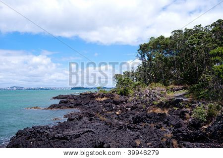 Rangitoto Island New Zealand