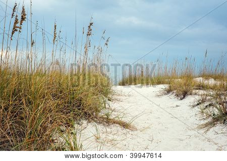 Sandy Path To Beautiful Beach