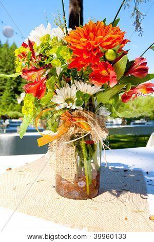 Orange und weiße Blumen