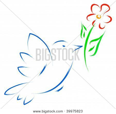 dove with flower