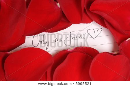 Red Rose Petals With Love Note