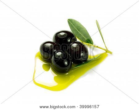 Olivee In The Oil