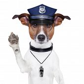 stock photo of emergency light  - police dog asking to stop with cap - JPG