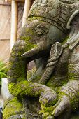 pic of ganesh  - Stone Ganesh with moss growing on his face in Bali - JPG