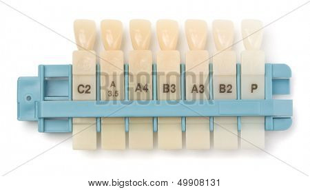 Dental teeth shades samples isolated on white