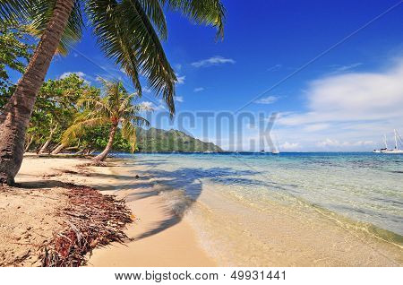 Quiet Sandy Beach, Moorea, Tahiti