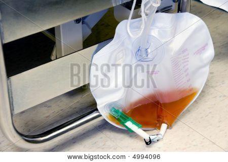 Foley Bag