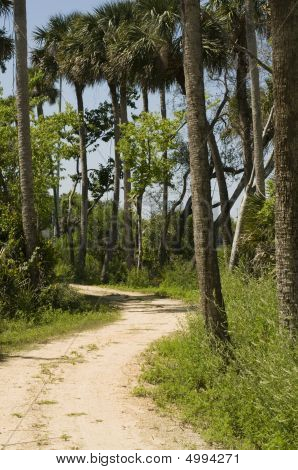 Park In Florida