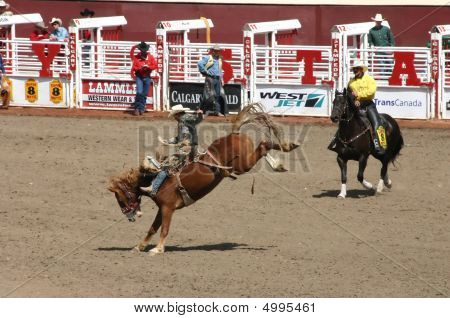 Cowboy Riding Bucking Bronco
