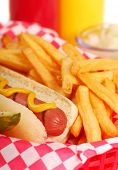 Freshly grilled hot dog with french fries and condiments