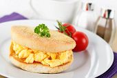 pic of scrambled eggs  - fresh homemade english muffin with scrambled eggs - JPG