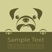 foto of pug  - A Vector image of a pug puppy - JPG