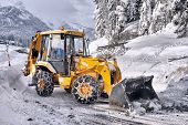 picture of fallen  - clearing roads of snow and fallen tree - JPG