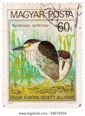 Stamp Printed In Hungary Shows Black-crowned Night Heron