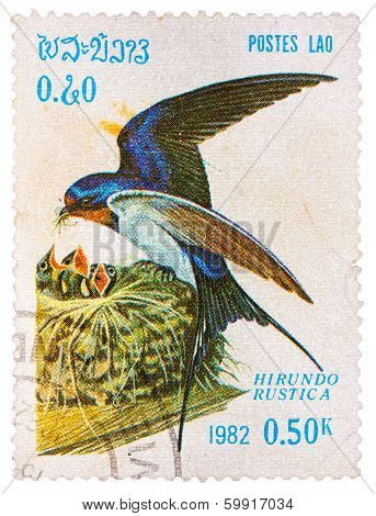 Stamp Printed In Laos Shows Barn Swallow (hirundo Rustica), From Series Birds