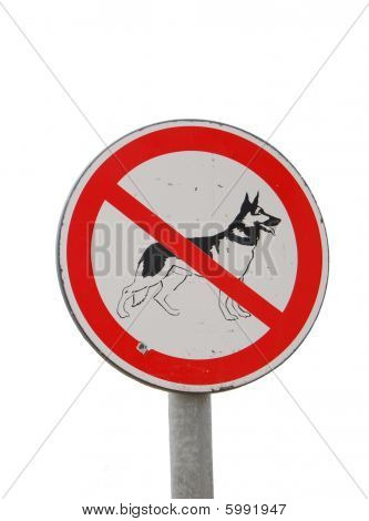 No Dog Sign (isolated Over White)