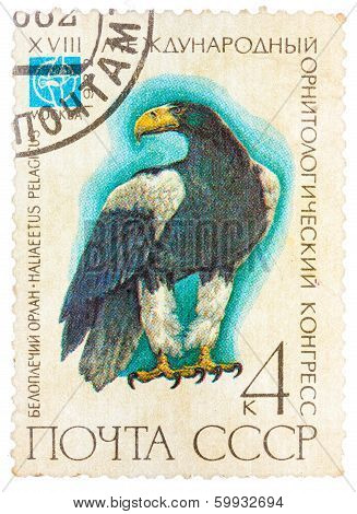 Stamp Printed In Ussr (russia) Shows A Bird Haliaeetus Pelagitus