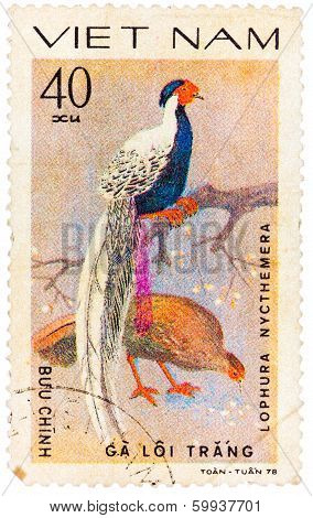 Stamp Printed In Vietnam Shows Lophura Nycthemera Or Silver Pheasant, Series Devoted To The Ornament