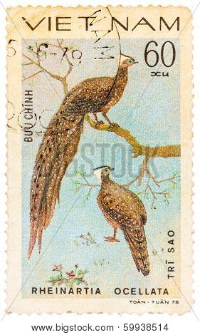 Stamp Printed In Vietnam Shows Rheinartia Ocellata Or Crested Argus, Series Devoted To The Ornamenta
