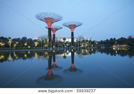 Singapore, Supertree Grove