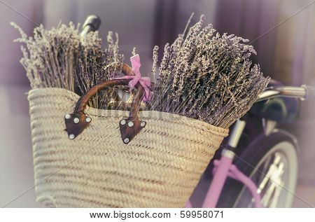 Lavender in basket on a bike