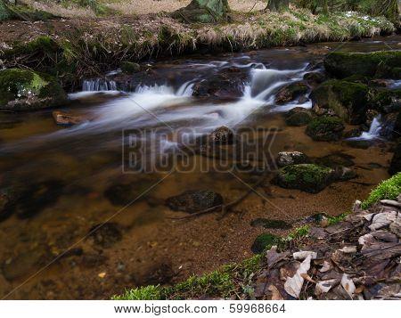 Harz Mountain Stream
