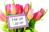 foto of easter card  - Happy Easter card among pink tulips over white - JPG