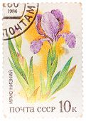 Stamp Printed In Ussr From The