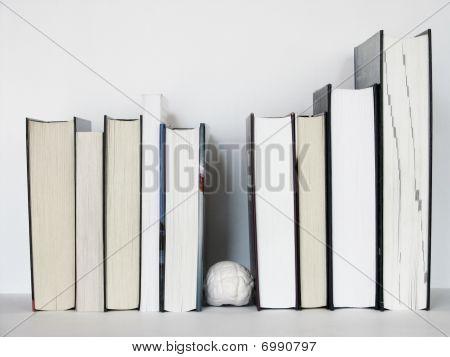Brain Between The Books 3