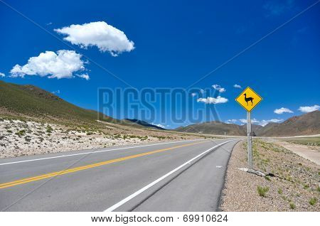 Traffic Sign : Watch For  Vicunas!!, Bolivia