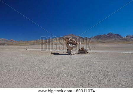 Piedra Del Arbol, Sur Lipez, South Bolivia
