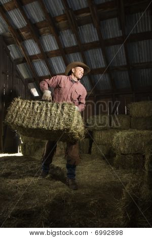 Man In Barn Moving Bales Of Hay