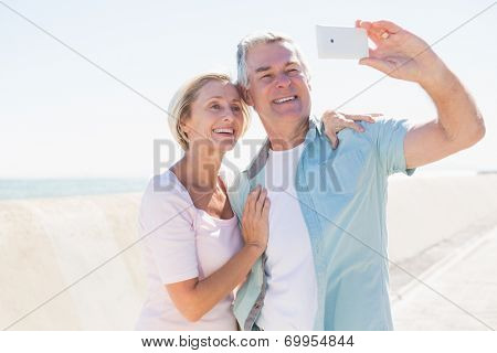 Happy senior couple posing for a selfie on a sunny day