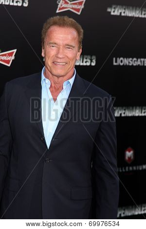 LOS ANGELES - AUG 11:  Arnold Schwarzenegger at the
