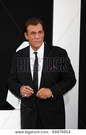 LOS ANGELES - AUG 11:  Robert Davi at the
