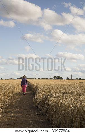 Cornfield Walk.