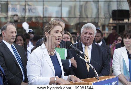 Debbie Wasserman-Schultz, DNC chair