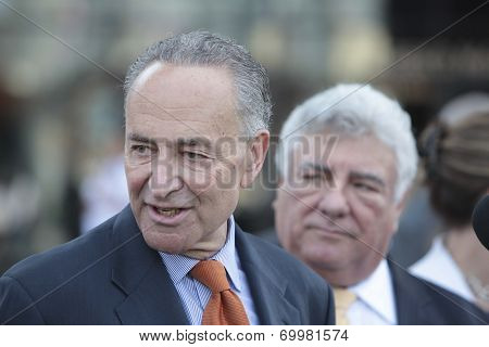 Senator Schumer at podium